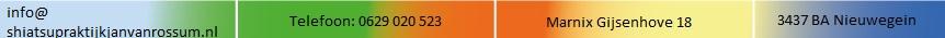 logo closing shiatsupraktijk jan van rossum.jpg